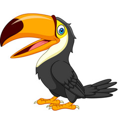 cartoon toucan isolated on white background vector image