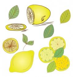 lemon set vector image