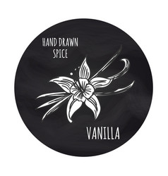 Spice vanilla on blackboard vector