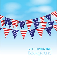 Usa bunting vector