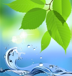 water wave and leaves vector image vector image