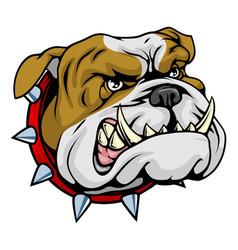 mean bulldog mascot vector image vector image