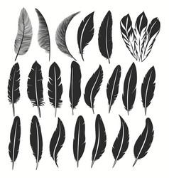 bird feather icon writing symbol fallen fluffy vector image