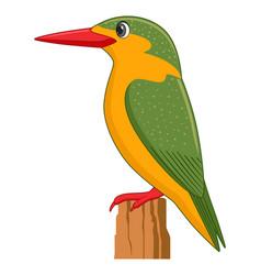 malachite kingfisher bird on a white background vector image