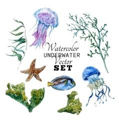 Marine set of Watercolor Tropical Fish vector