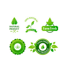 natural product icon fresh and bio food isolated vector image