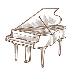 piano musical instrument isolated sketch classic vector image