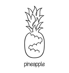 pineapple line art vector image