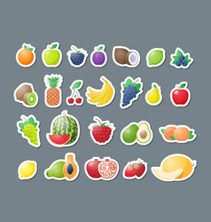 set fresh fruits stickers healthy food collection vector image