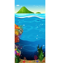 The underwater view of the ocean vector image