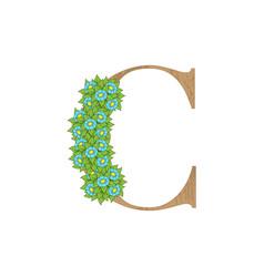 wooden leaves letter c vector image