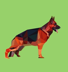 German shepherd dog low polygon style vector image vector image