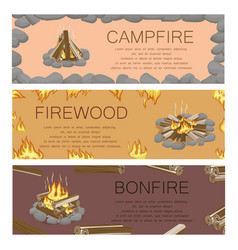 Campfire firewood and bonfire colorful poster vector