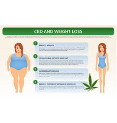 Cbd and weight loss horizontal textbook vector