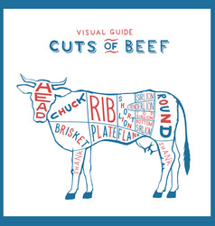 cuts beef cow logo red blue on white vector image