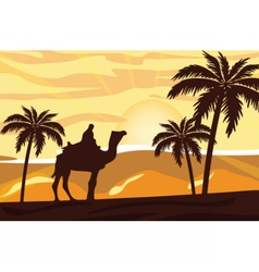 Egyptian camel and man at sunset vector
