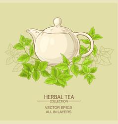 Peppermint herbal tea vector