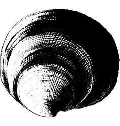 Shell grunge vector