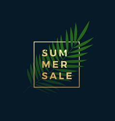 Tropical summer sale banner fern palm leaf vector