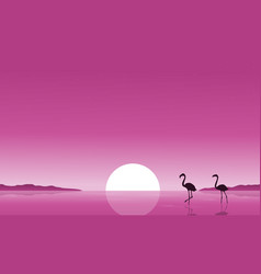 collection stock of flamingo on lake scenery vector image vector image