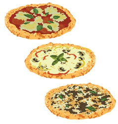 set of different pizzas vector image