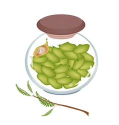 A Glass Jar of Chick Pea on White Background vector image