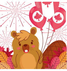 Beaver with canadian balloons happy canada day vector