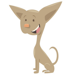 Chihuahua dog cartoon character vector