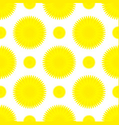 dandelion flower seamless pattern vector image