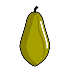 isolated papaya icon vector image