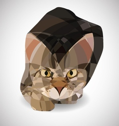 POLIGONAL CAT vector