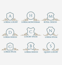 decorative ornament text signs vector image vector image