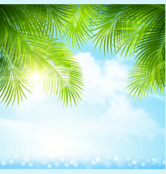Palm leaves with bright sunlight vector image