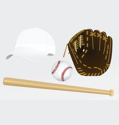 Baseball equipement vector