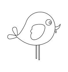 Bird cartoon icon image vector