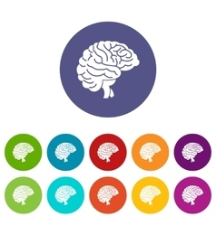 Brain set icons vector image