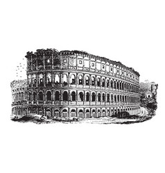 colosseum an immense amphitheater built vintage vector image