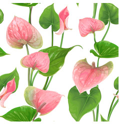 Floral seamless pattern with anthurium flowers and vector