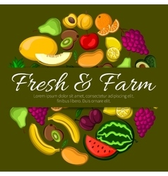 Fresh and farm fruits banner vector