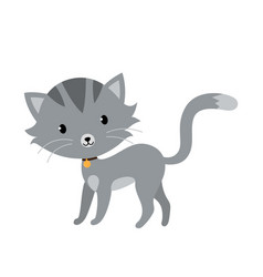 gray cat in flat style isolated on white vector image