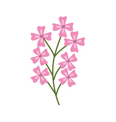 Pink branch flowers decoration vector