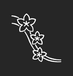 Sakura chalk white icon on black background vector