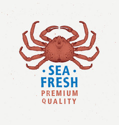 Seafood vintage label with red crab hand drawn vector