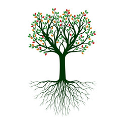 shape tree with colour leaves outline plant vector image