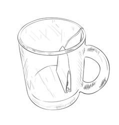 sketch of cup with tea bag vector image