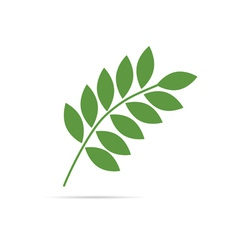 twig with leaves green vector image