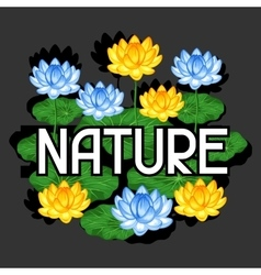 Natural background with lotus flowers and leaves vector image
