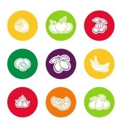 Line fruit icon set vector image