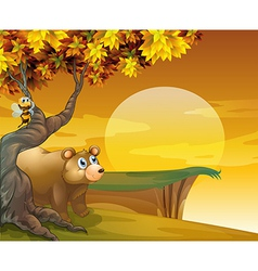 A bear and bee looking at the sunset vector