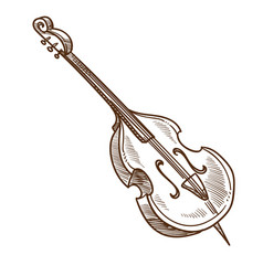 Musical instrument violoncello or cello classic vector
